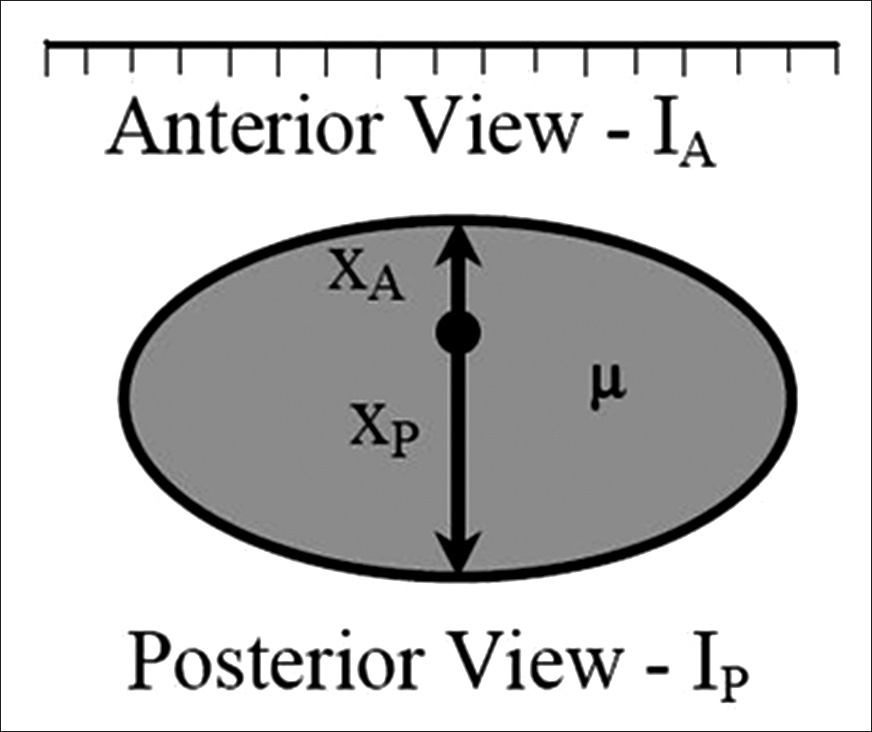 Figure 1: Imaging; the anterior and posterior views of the patient